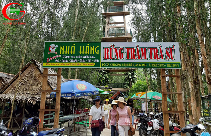 Kham-pha-ve-dep-cua-rung-tram-tra-su-o-an-giang-36