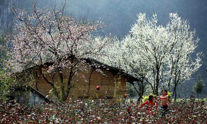 Tận hưởng vẻ đẹp 4 mùa chỉ trong 1 ngày tại Sa Pa